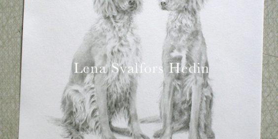 Djurporträtt av två hundar tecknade i blyerts