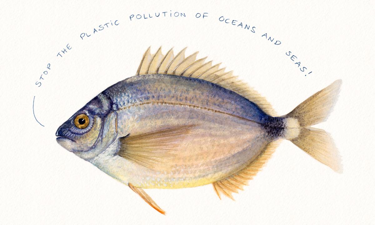 Fisk säger Stoppa nedskräpningen i haven