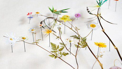 Blomkonst av Anne ten Donkelaar