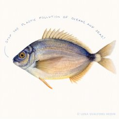 Fish watercolour illustration stop the plastic pollution of oceans and seas
