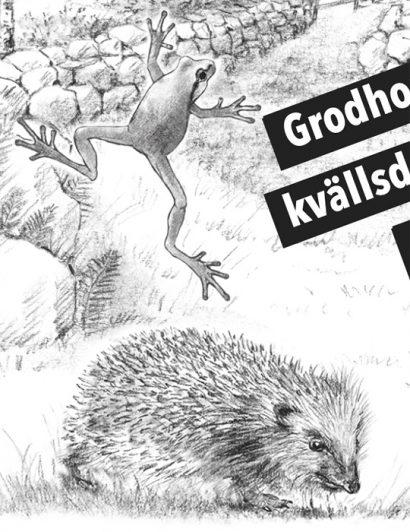 mjölk-paket-baksida-arla-teckning-lena-svalfors-hedin-2014-svenska-parlor-djur-natur-wwf-pandaplanet