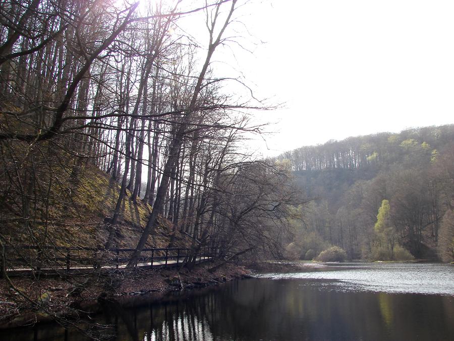Söderåsens nationalpark i Skåne