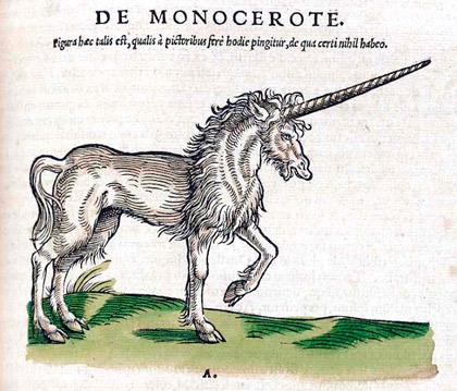 tecknad enhörning från medeltida Historiae Animalium