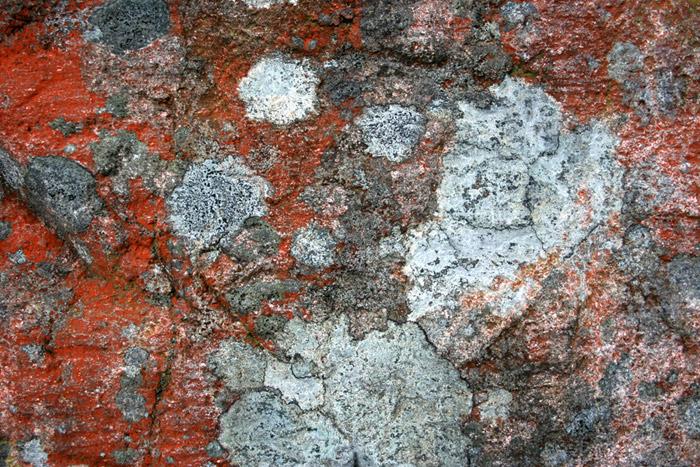 Colors of a rock