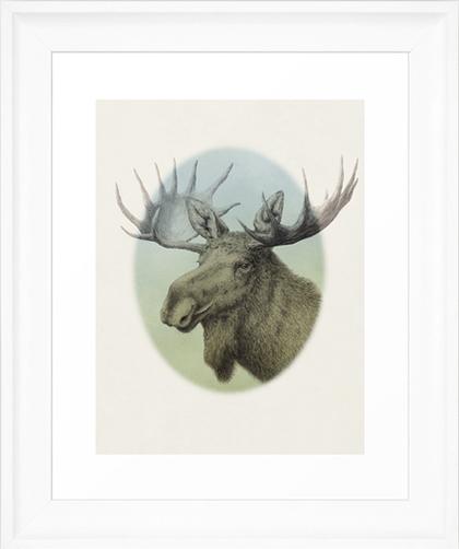 Konsttryck tavla print affisch med älg teckning av Lena Svalfors Hedin