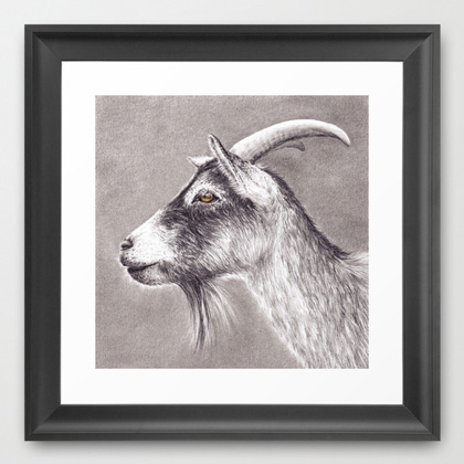 goat drawing