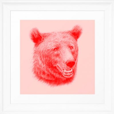Brown bear, björn, bjoern, ours, bär, iso, urso by illustrator Lena Svalfors Hedin, Sweden