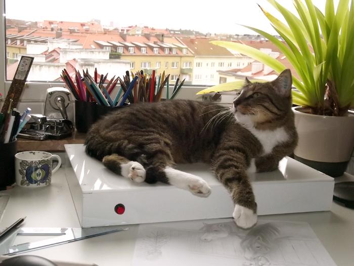 Katten Findus vilar på mitt ritbord