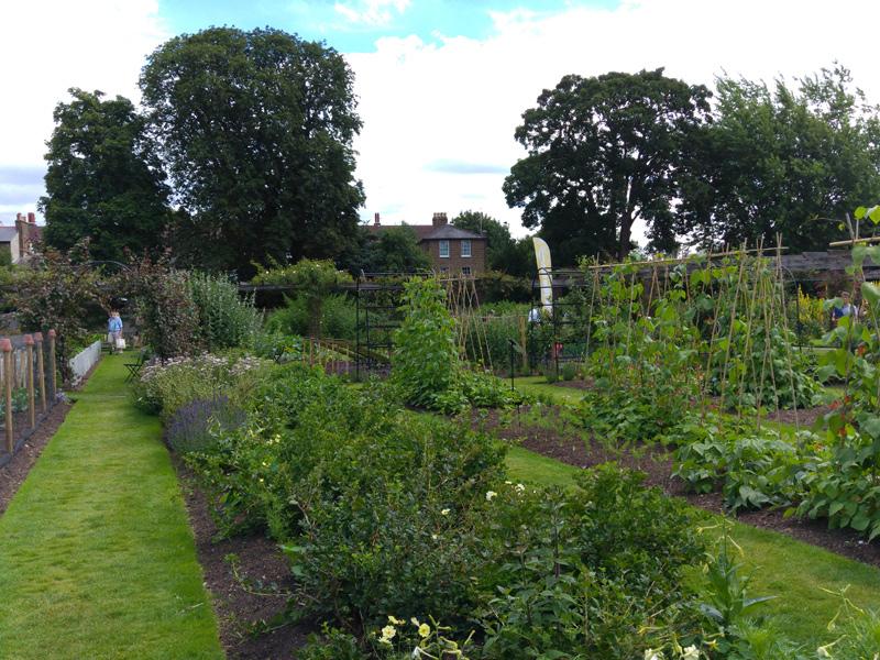 Vacker trädgård i Kew