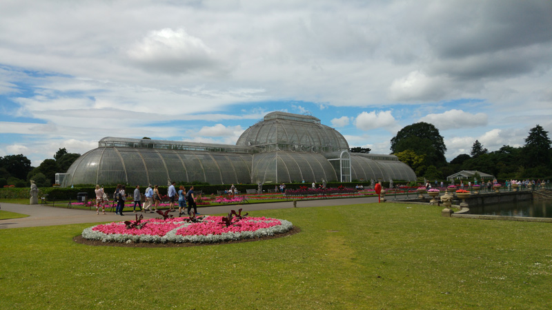 Palm tree house at the royal Kew garden