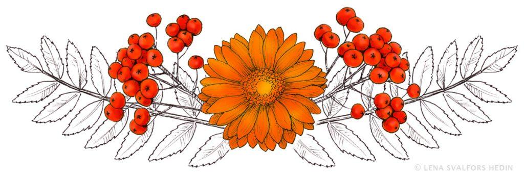 Tecknade blommor och rönnbär