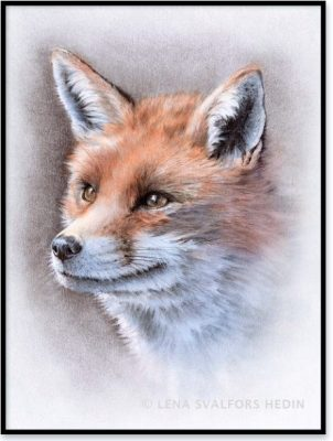 Mina djurteckningar säljs hos Nordic design Collective