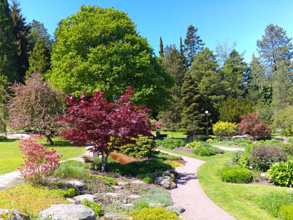 Botaniska i full blom i maj