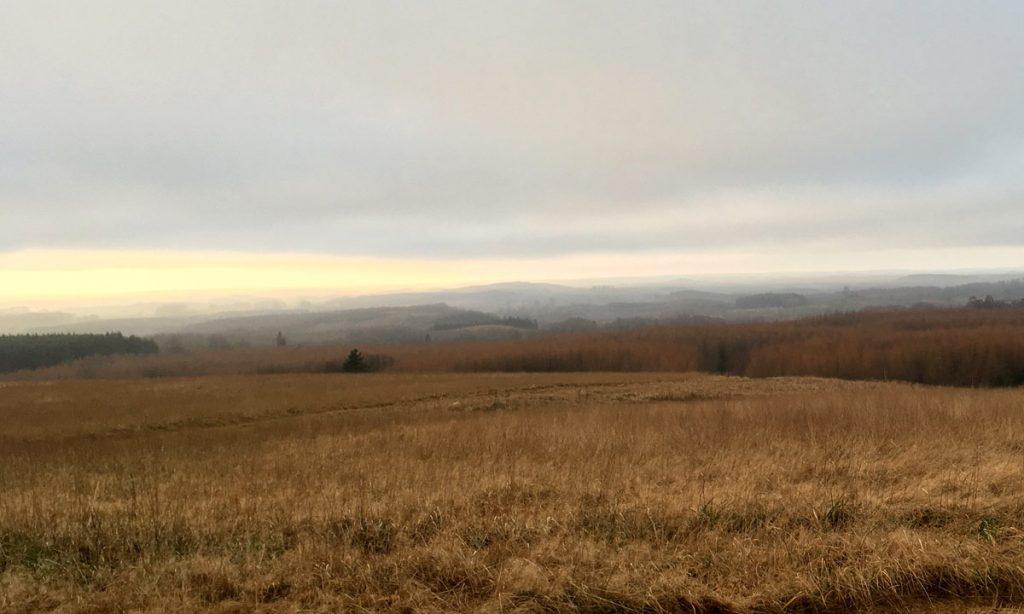 Utsikt över Romeleåsens från Romeleklint en vacker disig vinterdag
