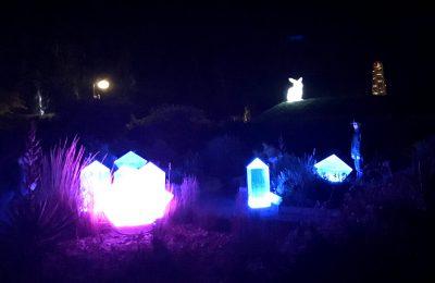 Ljuskristaller och lysande kanin i Slottsträdgårdens mörka natt
