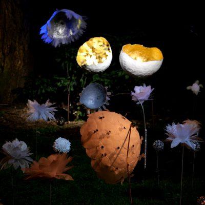 Nattväxter ljuskonstverk i Malmö