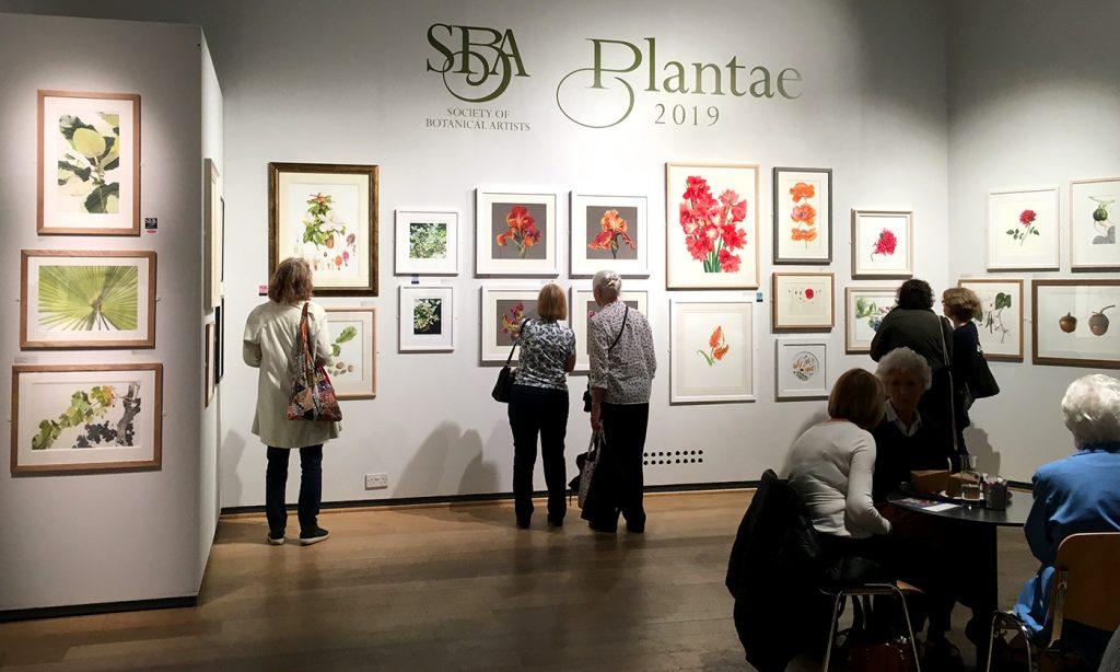 Plantae 2019 utställning med botaniska bilder